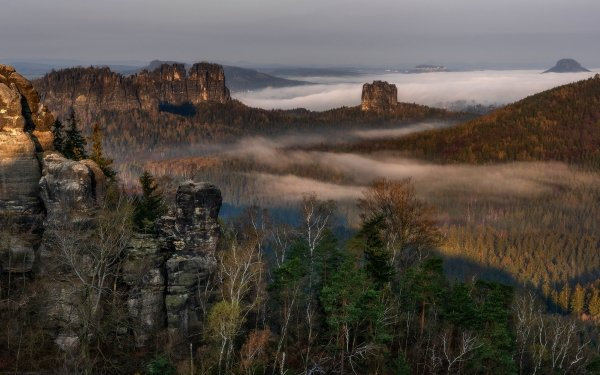 Earth Landscape Forest Fog Germany Elbe Sandstone Mountains Cliff Nature HD Wallpaper   Background Image