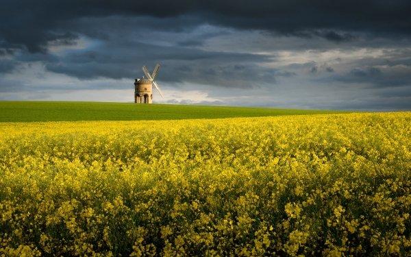 Man Made Windmill Buildings Field Flower Rapeseed Yellow Flower Summer Cloud HD Wallpaper   Background Image
