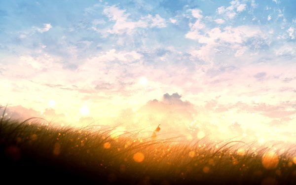 Anime Original Sunset Field Sky Cloud HD Wallpaper | Background Image