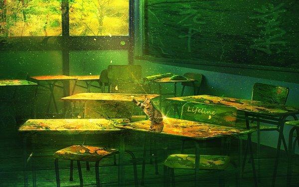 Anime Original Cat Room HD Wallpaper | Background Image