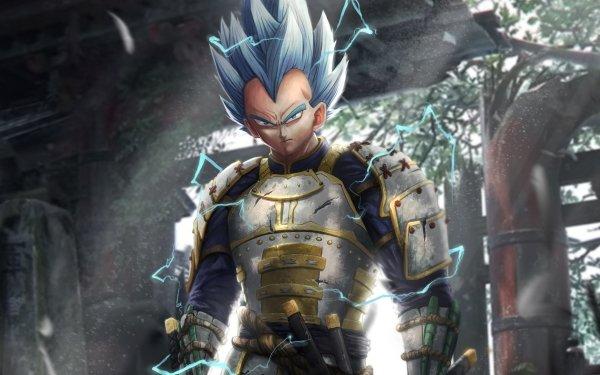 Anime Dragon Ball Vegeta Samurai HD Wallpaper   Background Image