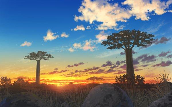 Anime Original Sky Tree Sunset HD Wallpaper   Background Image