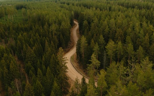 Photography Aerial Road Forest Landscape HD Wallpaper | Background Image
