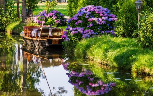 Vehicles Boat Hydrangea Reflection River HD Wallpaper | Background Image