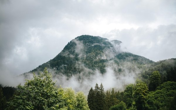 Earth Volcano Volcanoes Forest Mountain Fog Netherlands HD Wallpaper | Background Image