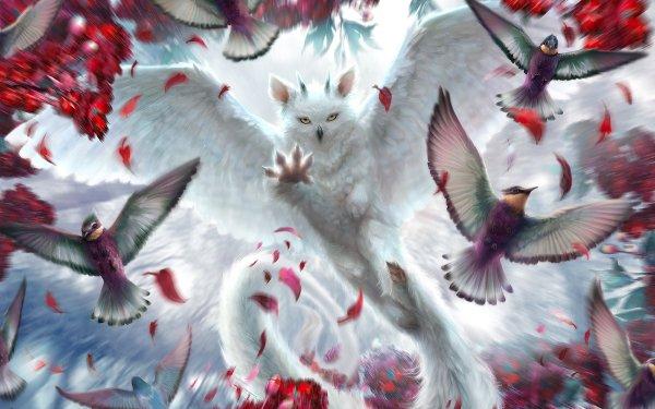 Fantaisie Chimera Animaux Fantastique Animaux Oiseau Fond d'écran HD   Arrière-Plan