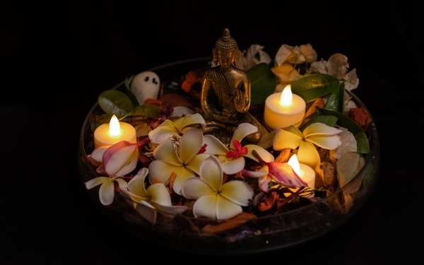 Religious Buddha Flower Flame Relax Candle Petal Figurine HD Wallpaper | Background Image