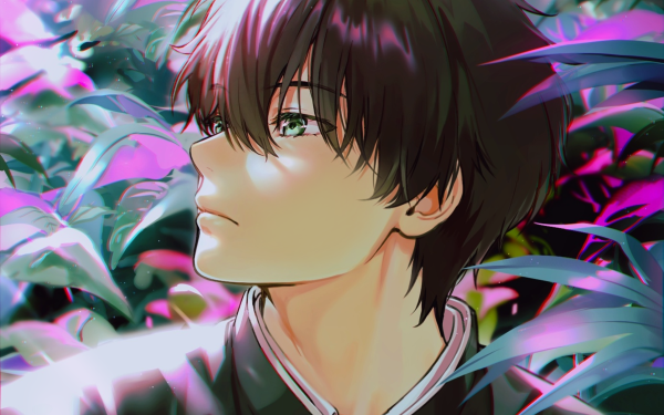 Anime Hyouka Hōtarō Oreki HD Wallpaper   Background Image
