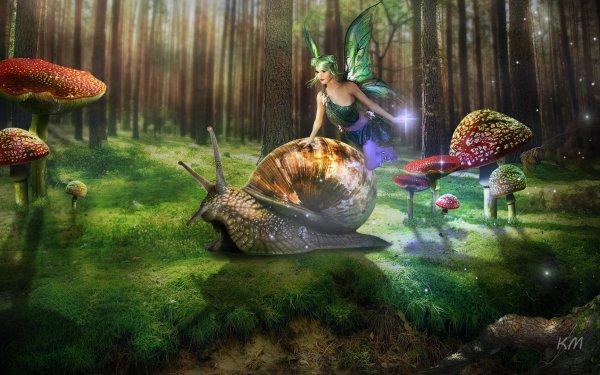 Fantasy Fairy Snail Mushroom HD Wallpaper   Background Image