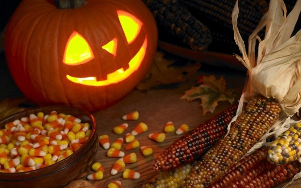 Holiday Halloween Sweets Corn HD Wallpaper | Background Image