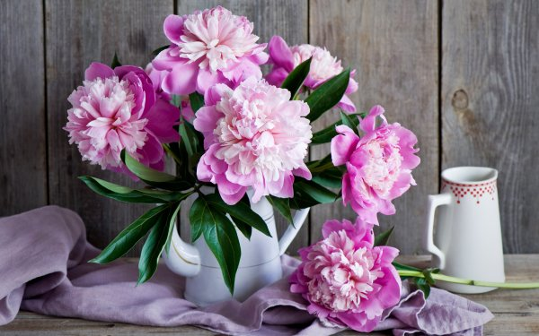 Man Made Flower Bouquet Jug Peony HD Wallpaper | Background Image
