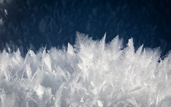 Earth Snowflake Macro Ice Frost HD Wallpaper | Background Image