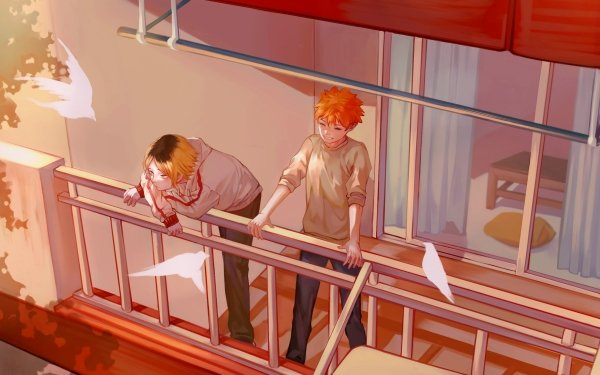 Anime Haikyu!! Shōyō Hinata Kenma Kozume HD Wallpaper | Background Image
