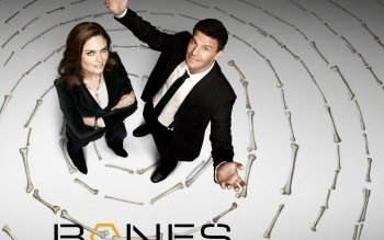 TV Show - Bones Wallpapers and Backgrounds ID : 284469