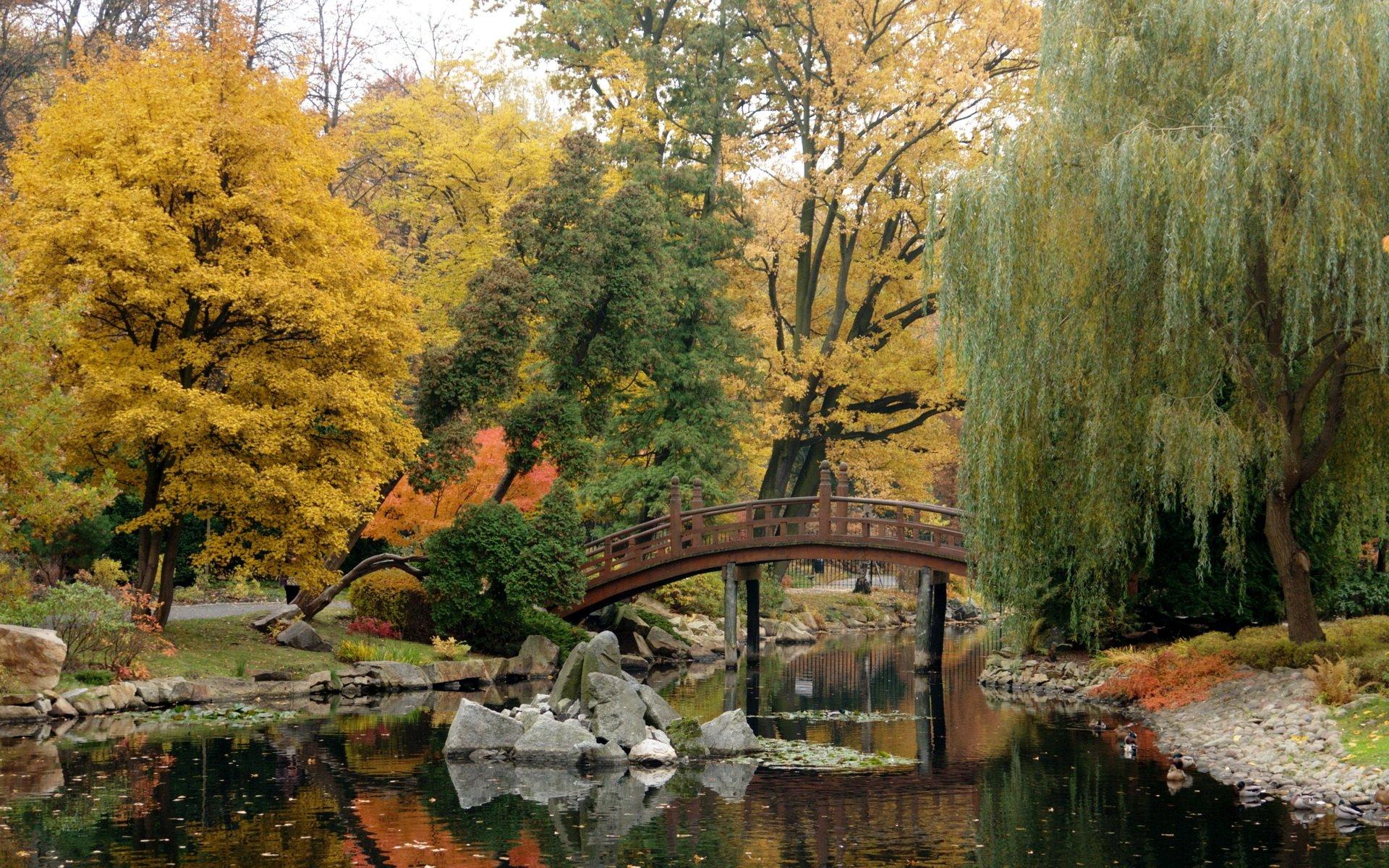 Earth - Fall  Garden Bridge Wallpaper