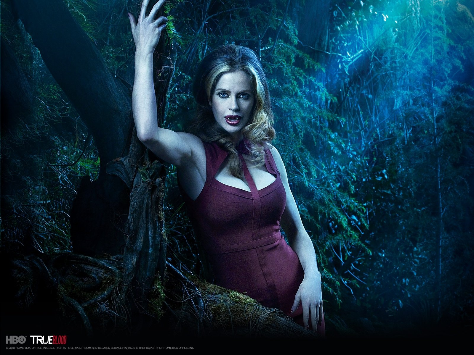 True Blood Wallpaper And Background Image 1600x1200 Id 285869