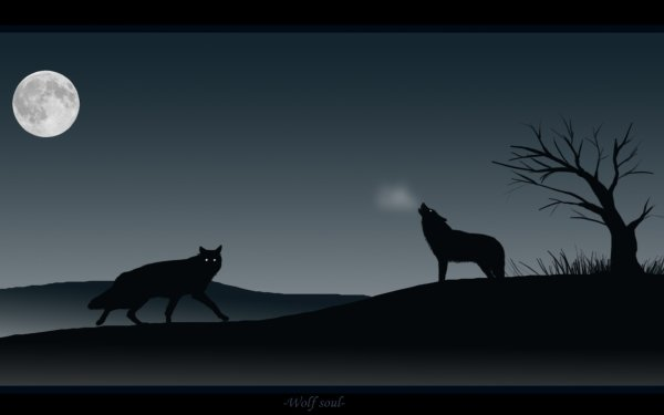 Animal Wolf Moon Artistic Dog HD Wallpaper | Background Image