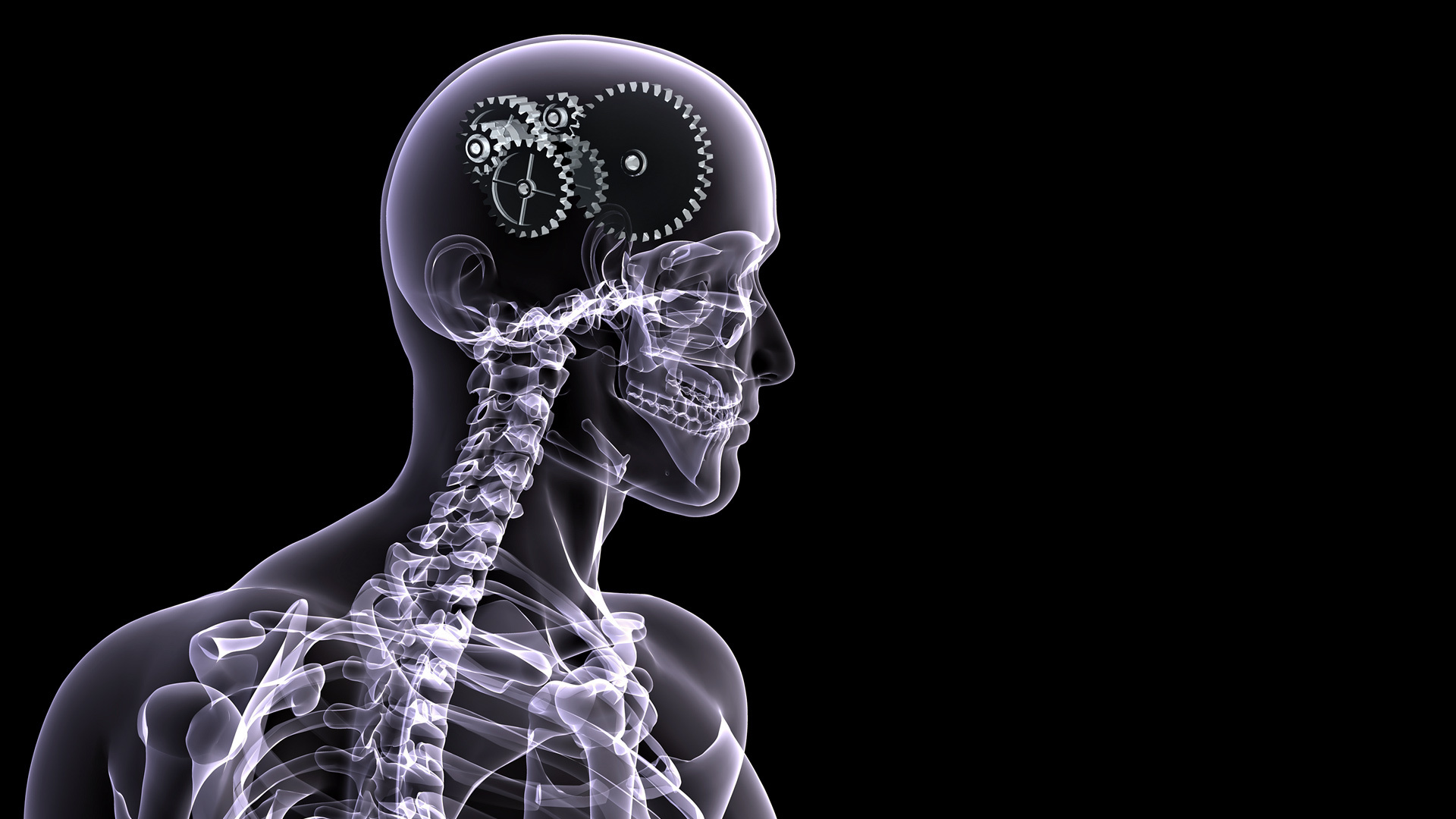 X ray hd wallpaper background image 1920x1080 id - Brain wallpaper 3d ...