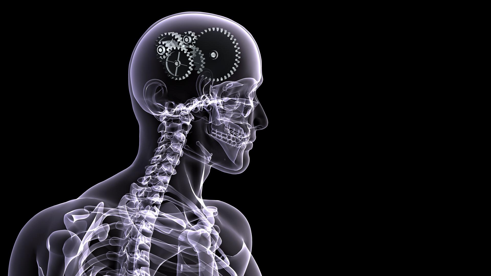 photography x ray man brain skeleton wallpaper