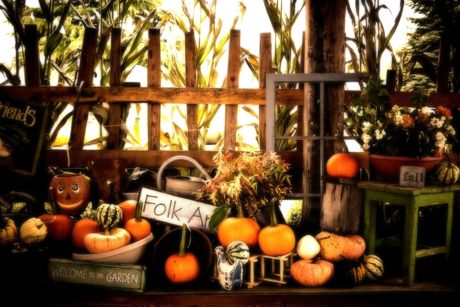 Halloween hd wallpaper background image 2560x1707 id - Pumpkin wallpaper fall ...