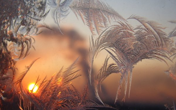 Earth Winter Pastel Frost Sunset HD Wallpaper | Background Image