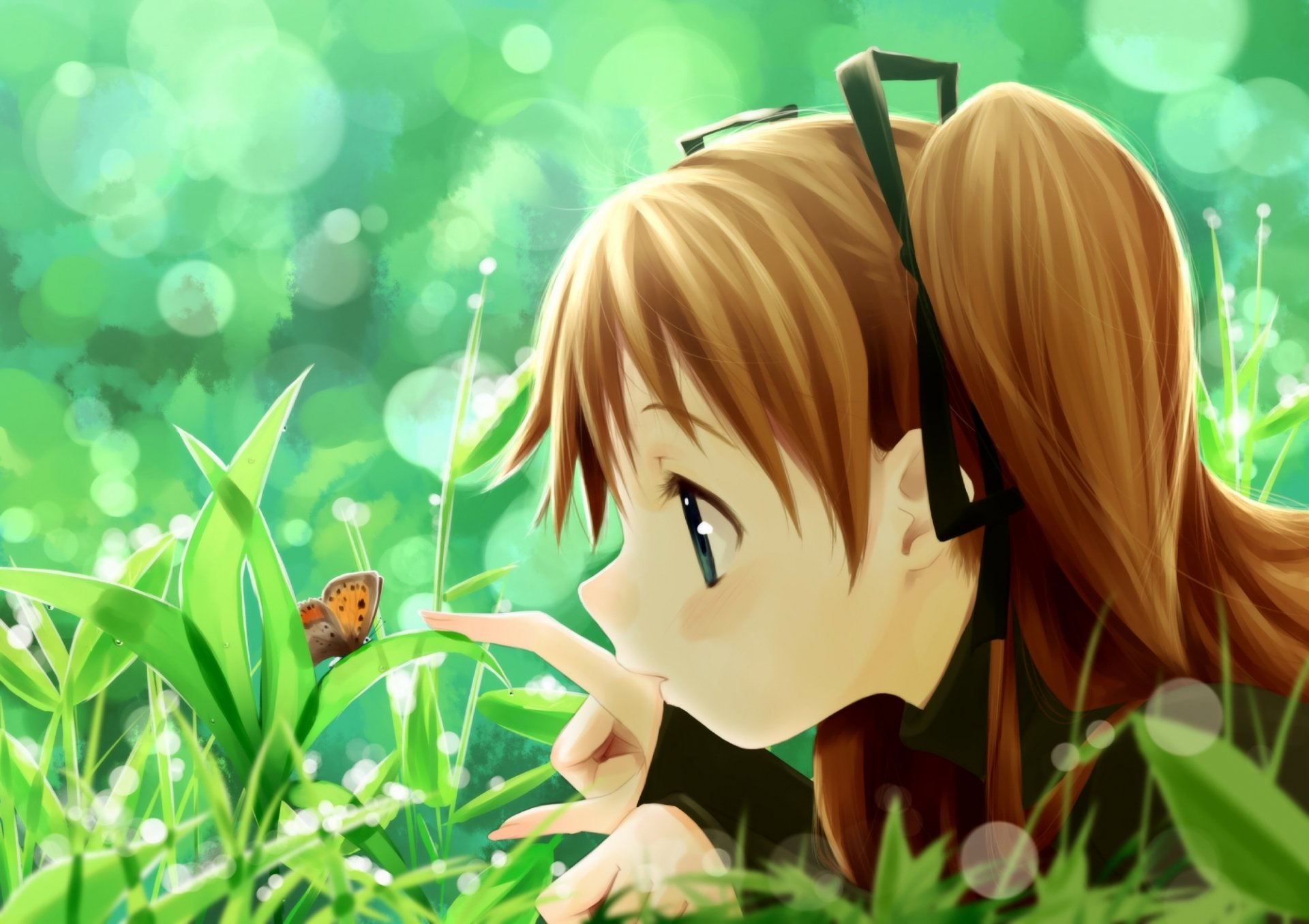 Wallpapers ID:354493