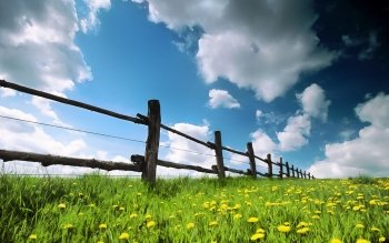 Man Made - Fence Wallpapers and Backgrounds ID : 354606