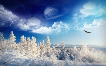 Artistic - Winter Wallpapers and Backgrounds ID : 356429