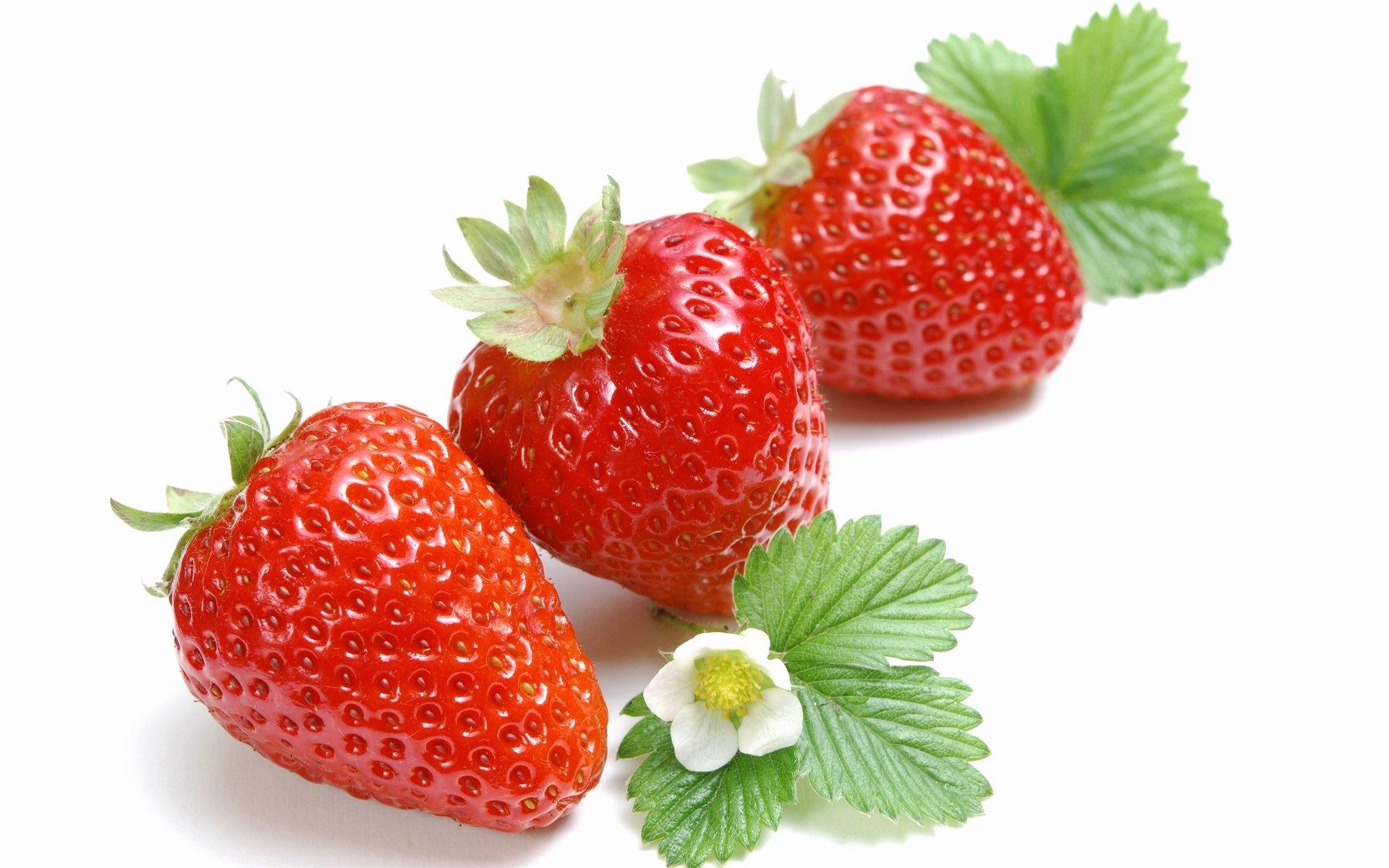 Food - Strawberry  Wallpaper