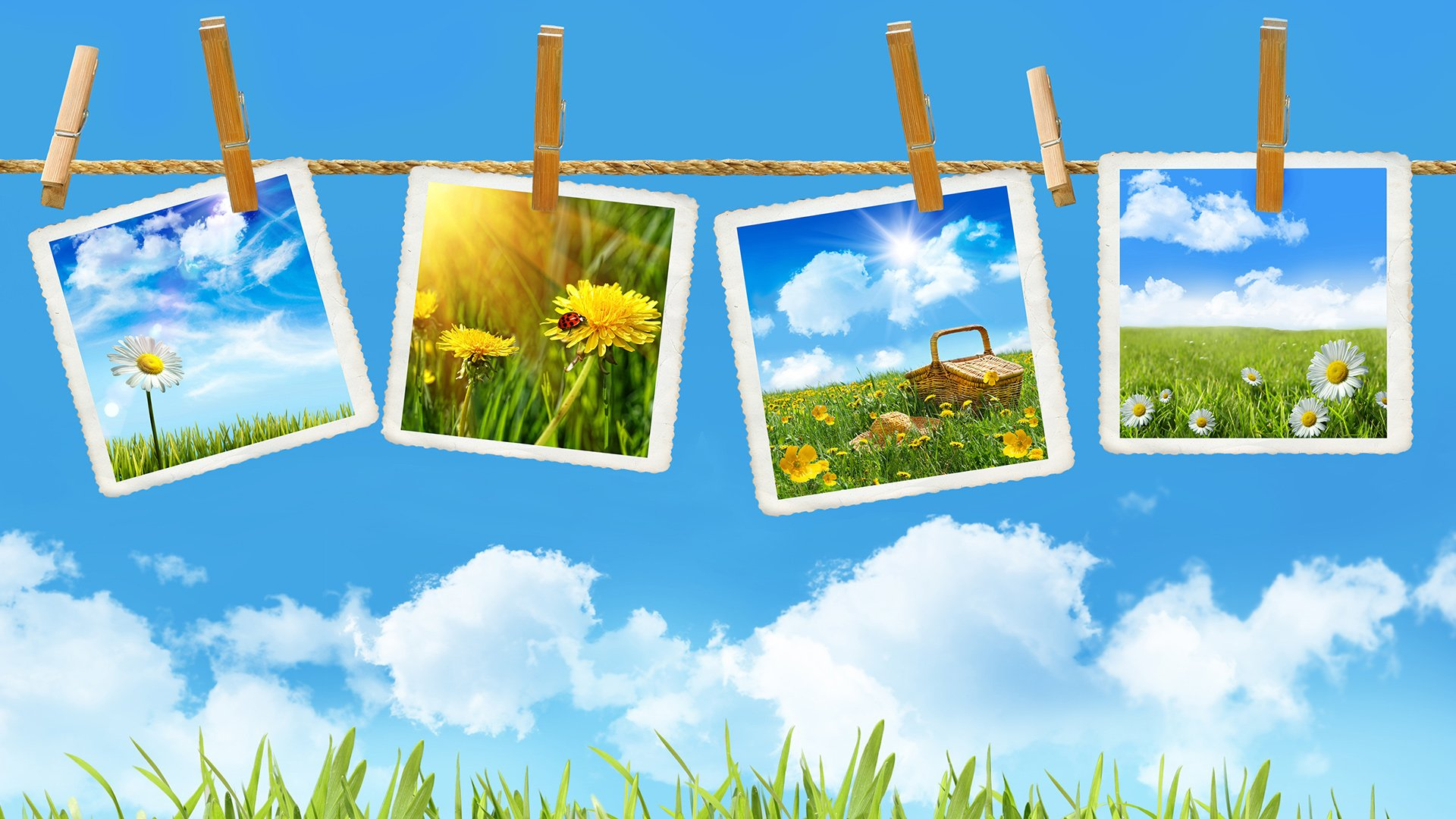 Wallpapers ID:358878