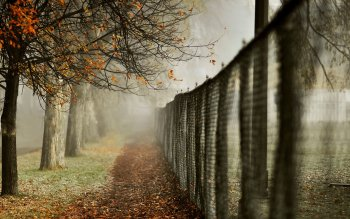 Man Made - Fence Wallpapers and Backgrounds ID : 358718
