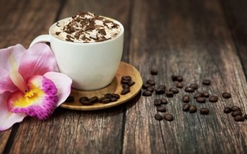 Food - Coffee Wallpapers and Backgrounds ID : 367887