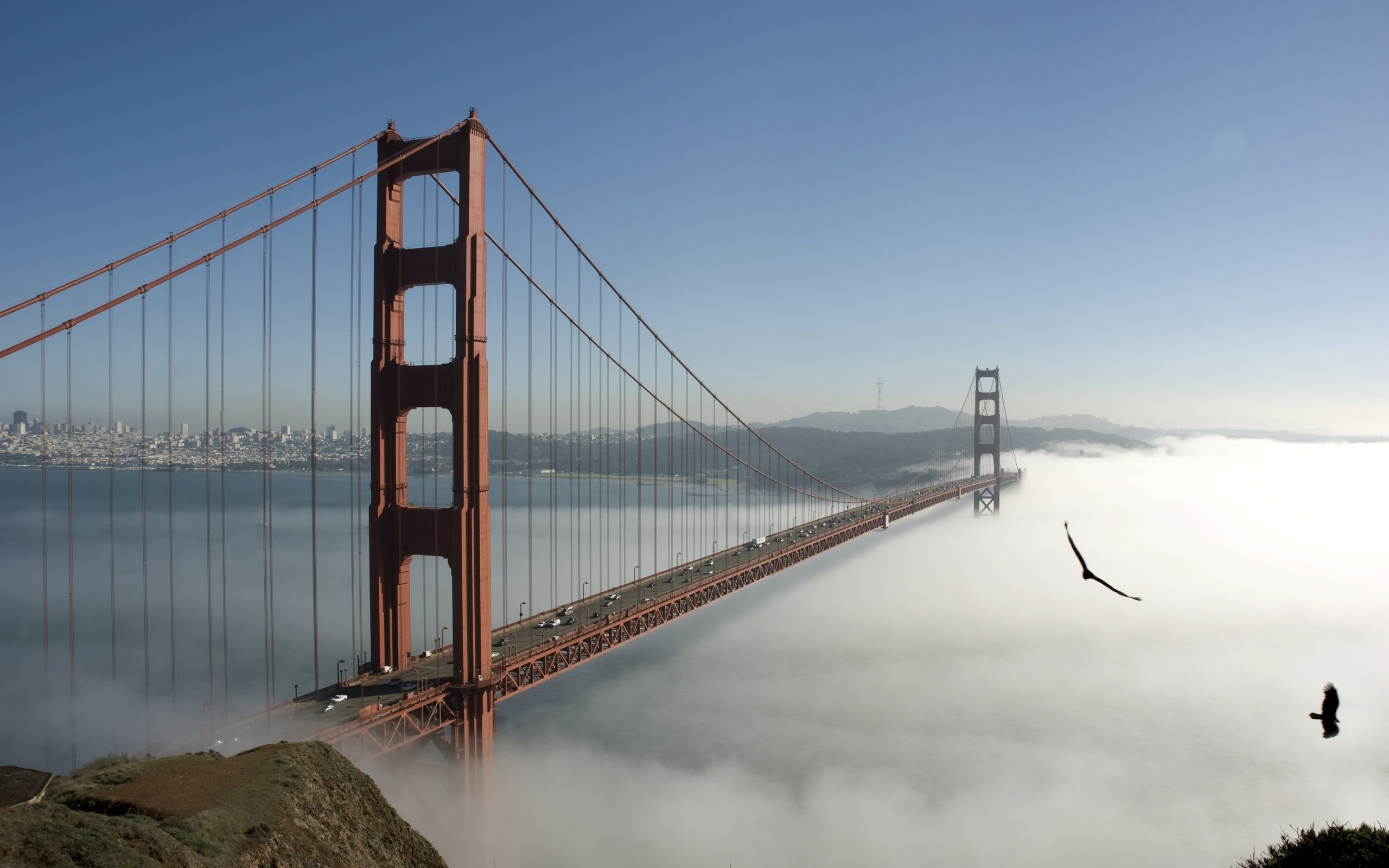 Golden Gate Hd Wallpaper Background Image 2560x1600 Id