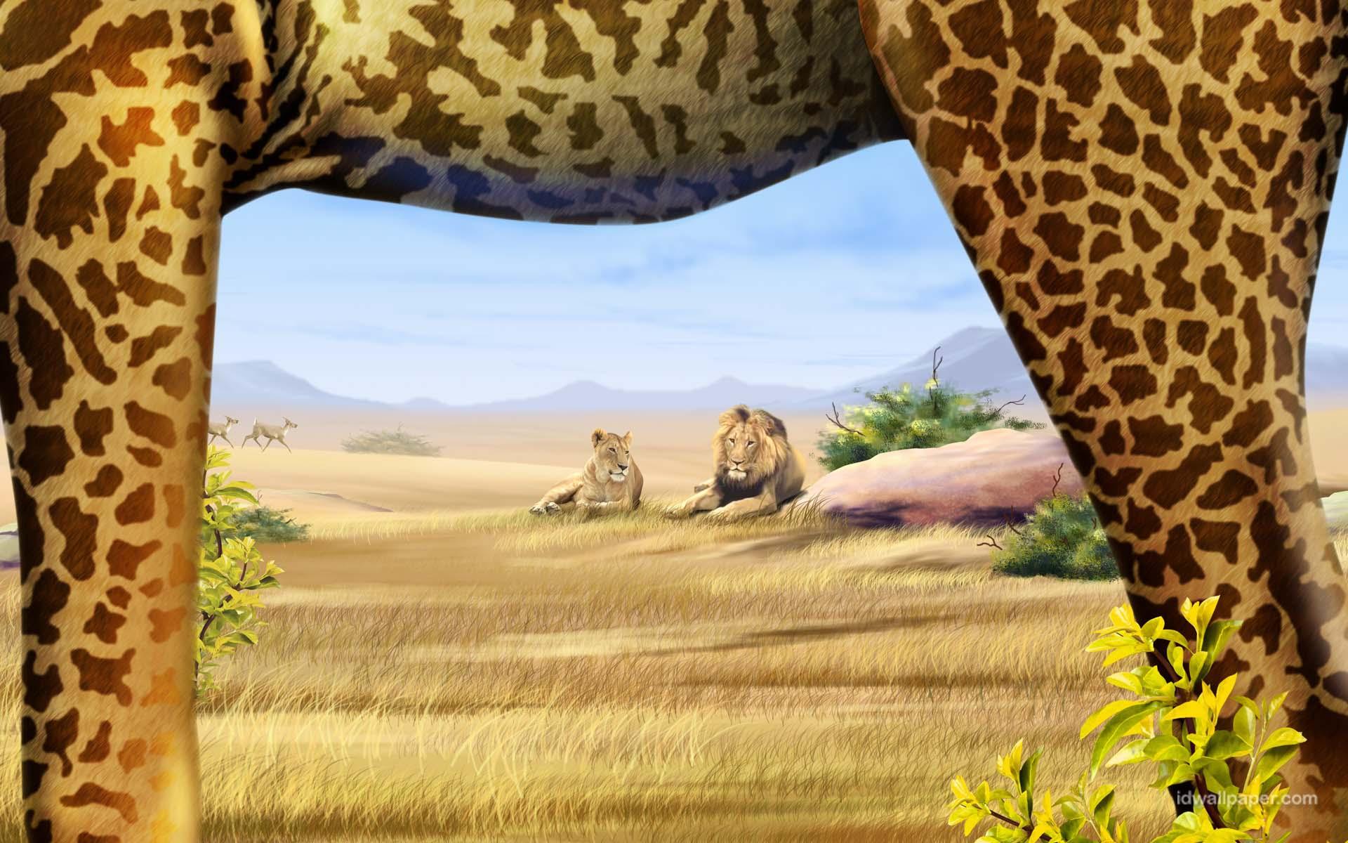 wallpaper safari animals