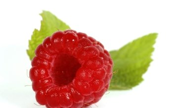 Alimento - Raspberry Wallpapers and Backgrounds ID : 370877