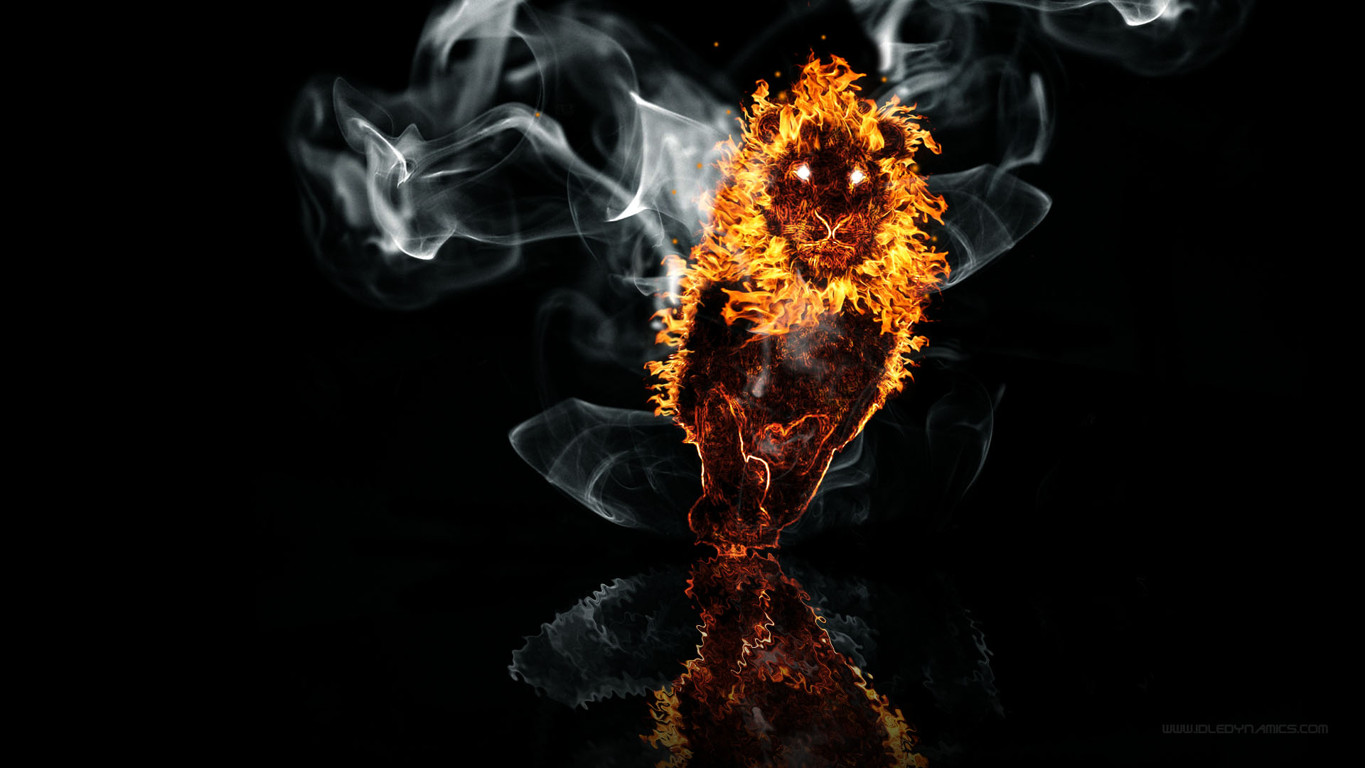 Lion Fire On The Water Hd Wallpaper Background Image 1920x1080