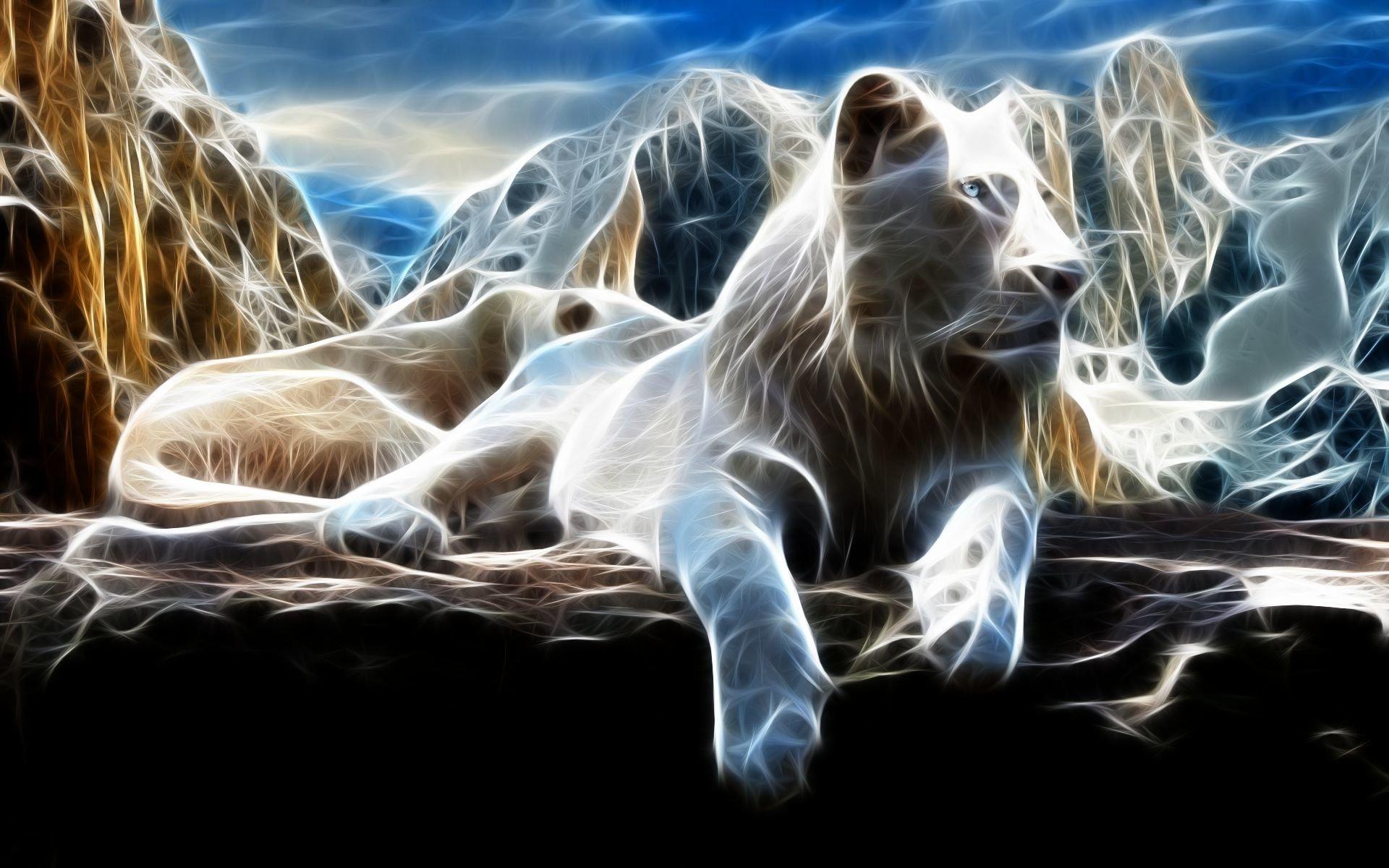 Animal - White Lion  Wallpaper