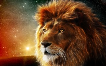 Artistico - Lion Wallpapers and Backgrounds ID : 372048