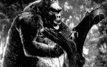 Movie - King Kong Wallpapers and Backgrounds ID : 372408