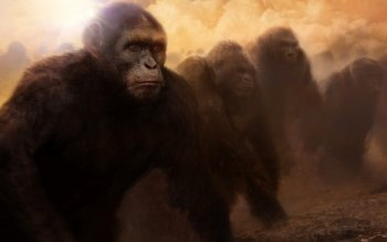 Movie - Rise Of The Planet Of The Apes Wallpapers and Backgrounds ID : 372762