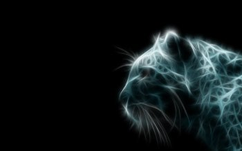 Animal - Leopard Wallpapers and Backgrounds ID : 372789