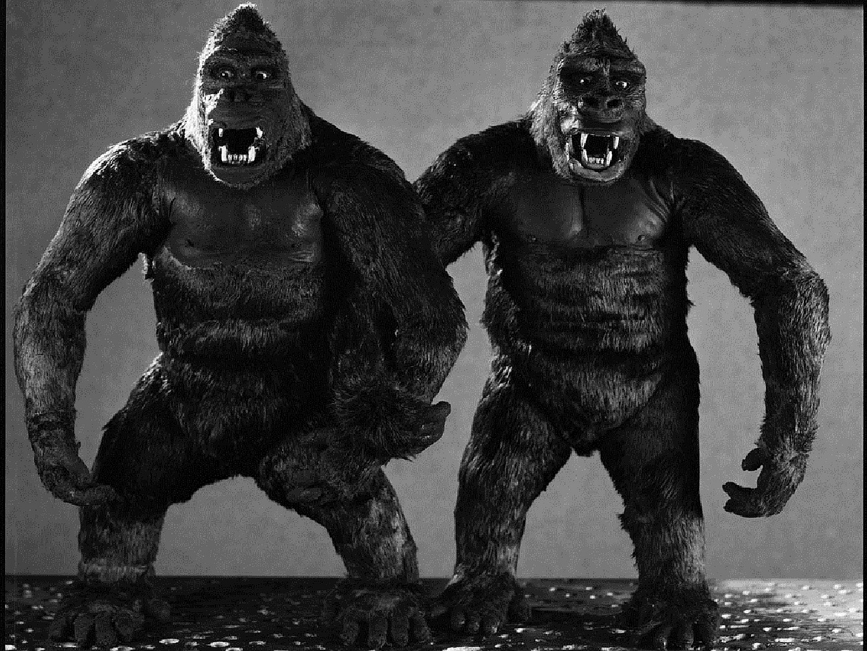 King Kongs Dick 47
