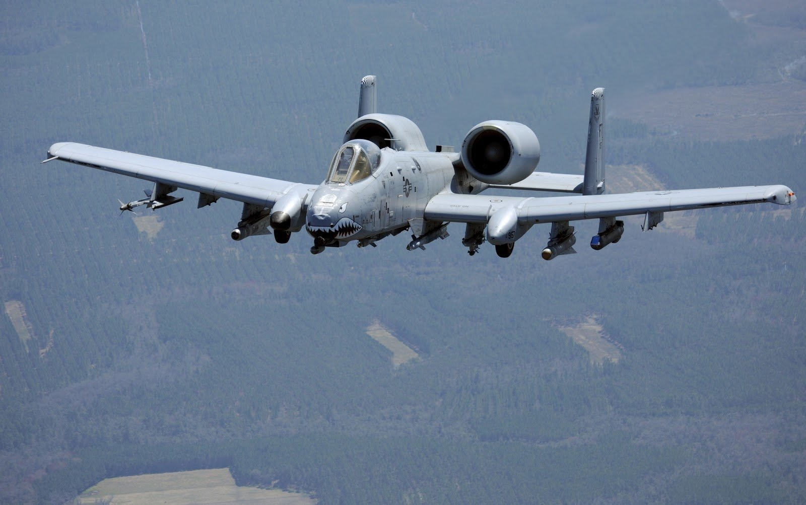 a 10 warthog iphone wallpaper