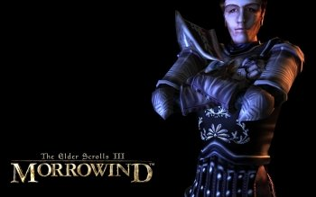 Video Game - The Elder Scrolls III: Morrowind Wallpapers and Backgrounds ID : 374515