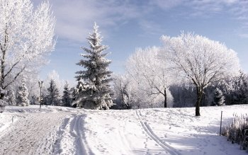 Earth - Winter Wallpapers and Backgrounds ID : 376023