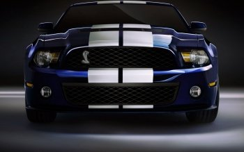 Vehicles - Ford Mustang Shelby Gt 500  Wallpapers and Backgrounds ID : 378416