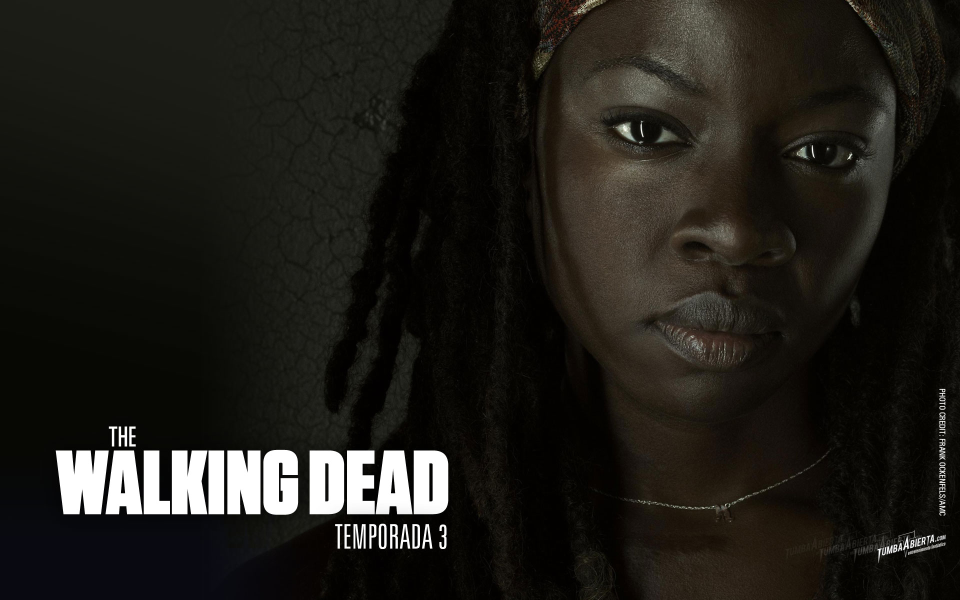 The Walking Dead HD Wallpaper | Hintergrund | 1920x1200 | ID:380827 ...