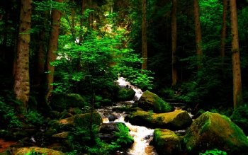 Earth - Stream Wallpapers and Backgrounds ID : 380137