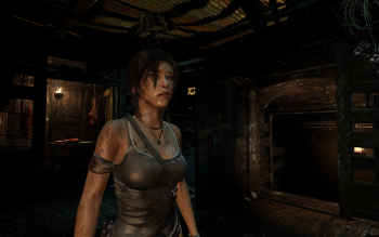 Video Game - Tomb Raider Wallpapers and Backgrounds ID : 380220