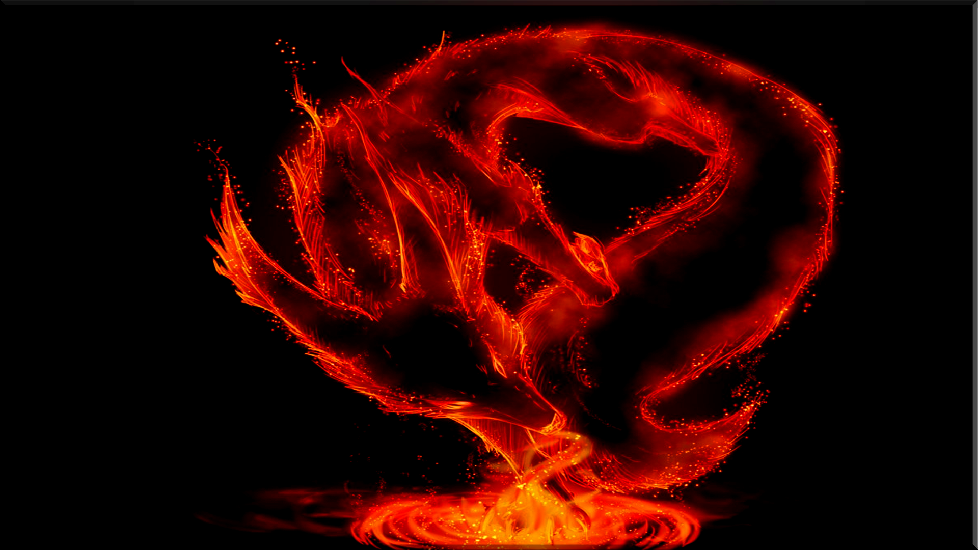 Fire Dragons Full HD Wallpaper And Background Image